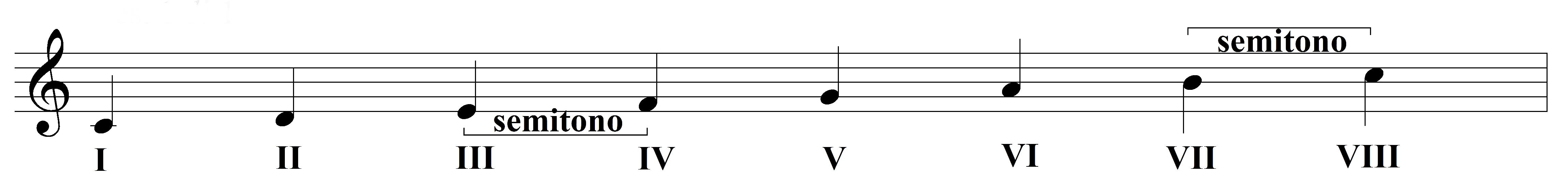 LA SCALA MUSICALE (definizione e costruzione – le scale più utilizzate)