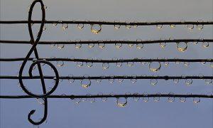 PENTAGRAMMA E TAGLI ADDIZIONALI - rigo musicale, introduzione delle note musicali, prolungamenti del pentagramma e lo spezza battuta
